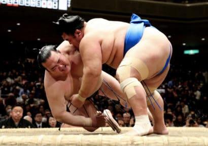 Hakuho et Kisenosato chutent de nouveau