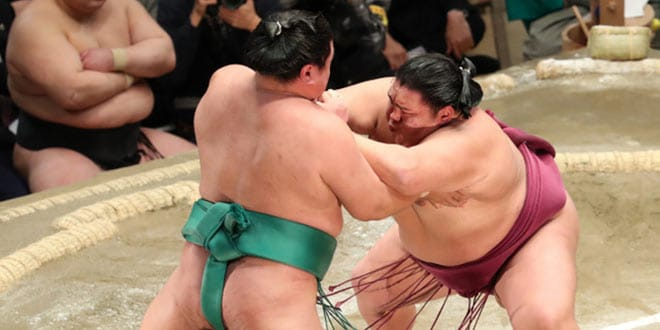 J7 – Kakuryu et Mitakeumi restent en tête