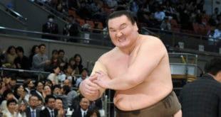 Hakuho blessé au bras