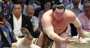 Hakuho contre Aooiyama