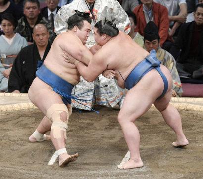Kotoshogiku contre Shodai