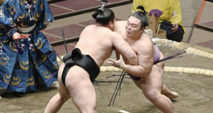 Asanoyama contre Kiribayama