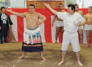 Harumafuji avec la tsuna