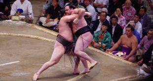 Harumafuji contre Kaisei