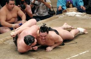 Harumafuji remporte le tournoi