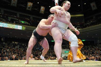 le yokozuna harumafuji sort du dohyo baruto
