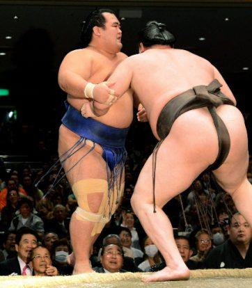 Kotoshogiku face à Hakuho