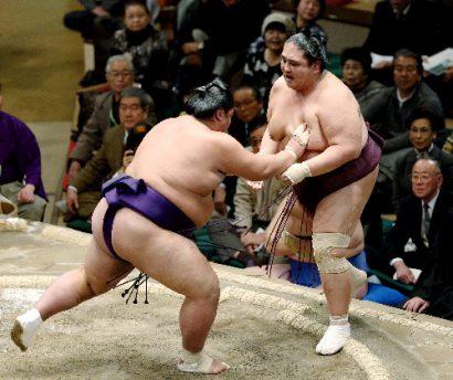 Sadanofuji contre Miyabiyama
