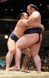 Kakuryu contre Tochinoshin