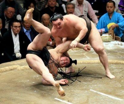 Harumafuji perd face au yokozuna Hakuhô à l'Aki basho 2013