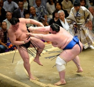 défaite de Harumafuji face à Aoiyama