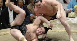 Hakuho contre Harumafuji