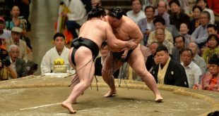 Harumafuji contre Goeido