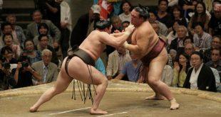 Harumafuji contre Kisenosato