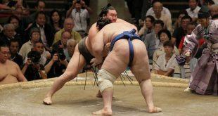 Hakuho contre Aoiyama