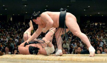 Harumafuji contre Chiyootori