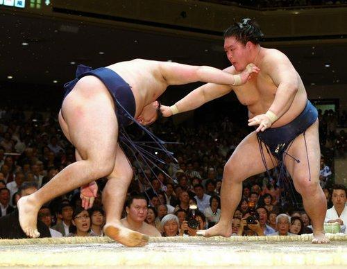 J12 – Hakuhô reprend la tête du tournoi