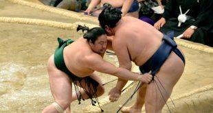 Sadanoumi contre Tochinowaka
