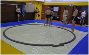 Le dohyo du club de Paris Sumo