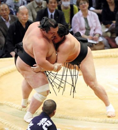 Harumafuji fait un retour en force contre Toyohibiki