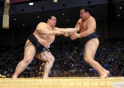 Kakuryu contre Kisenosato
