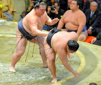 Kisenosato contre Goeido