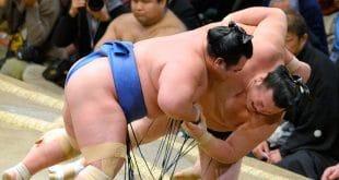 Kotoshogiku contre Ikioi