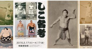 Les shikona populaires
