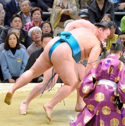 Hakuhô, Aminishiki et Terunofuji en tête du tournoi. Hakuhô bat le mongol Tamawashi