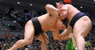 Harumafuji contre Tochinoshin kinboshi