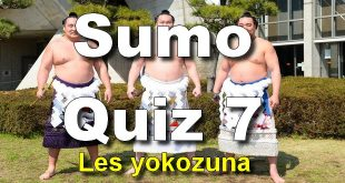 sumo quiz 7 les yokozuna