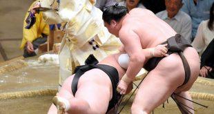 Hakuho contre Terunofuji