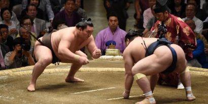 Hakuho contre Takarafuji