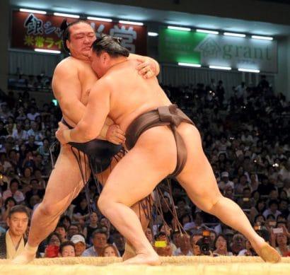 Hakuho est à une victoire du titre après sa victoire sur Kisenosato