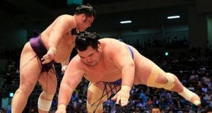 Tochiozan contre Kotoshogiku