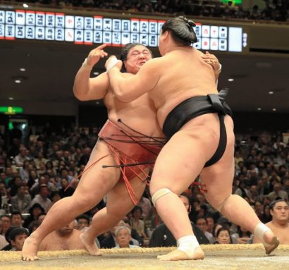 Terunofuji et Kisenosato restent invaincus