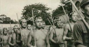 Le sumo pendant la guerre