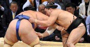Harumafuji contre Kotoshogiku