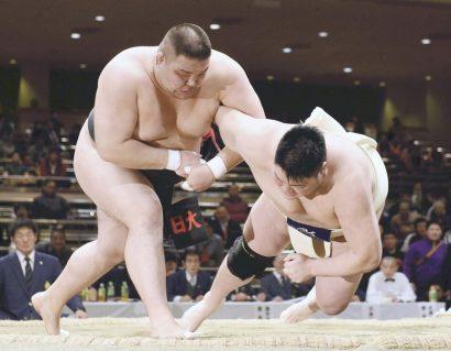 Un mongol devient le 1er yokozuna amateur étranger