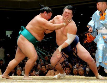 Le nouveau sekiwake Yoshikaze s'est imposé face à Ikioi