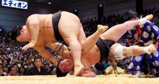 Goeido contre Harumafuji une