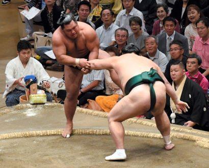 Okinoumi et Goeido restent en tête de la division makuuchi