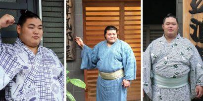 Oyanagi, Daishoho et Meisei sont les nouveaux jûryô