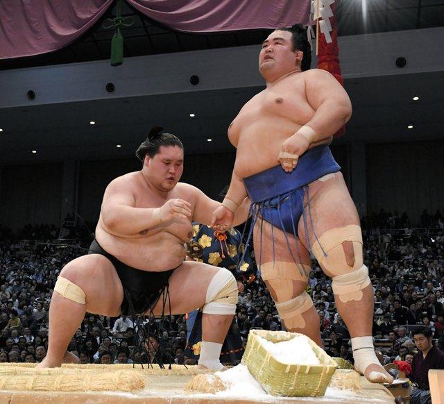 Terunofuji contre Kotoshogiku