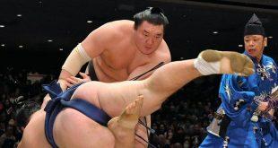 Hakuho contre Ikioi
