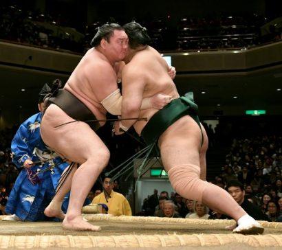 Hakuho et Kisenosato seuls lutteurs invaincus du tournoi.