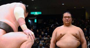 Kisenosato et Hakuho