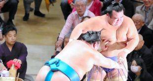 Tamawashi contre Kotoshogiku