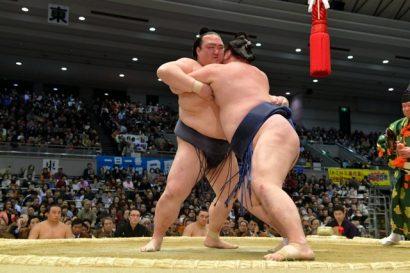 Kisenosato se maintient en tête