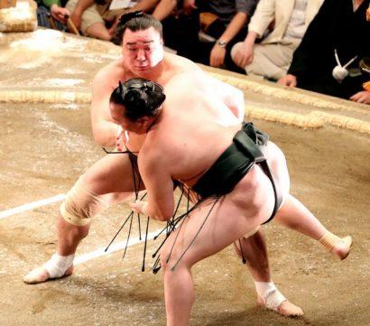 Hakuho et Harumafuji conservent leur invulnérabilité